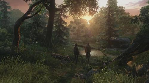 Last Of Us Forest