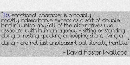 DQ David Foster Wallace